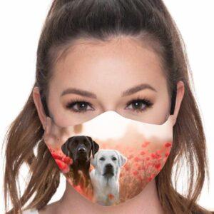 Mascarilla perros